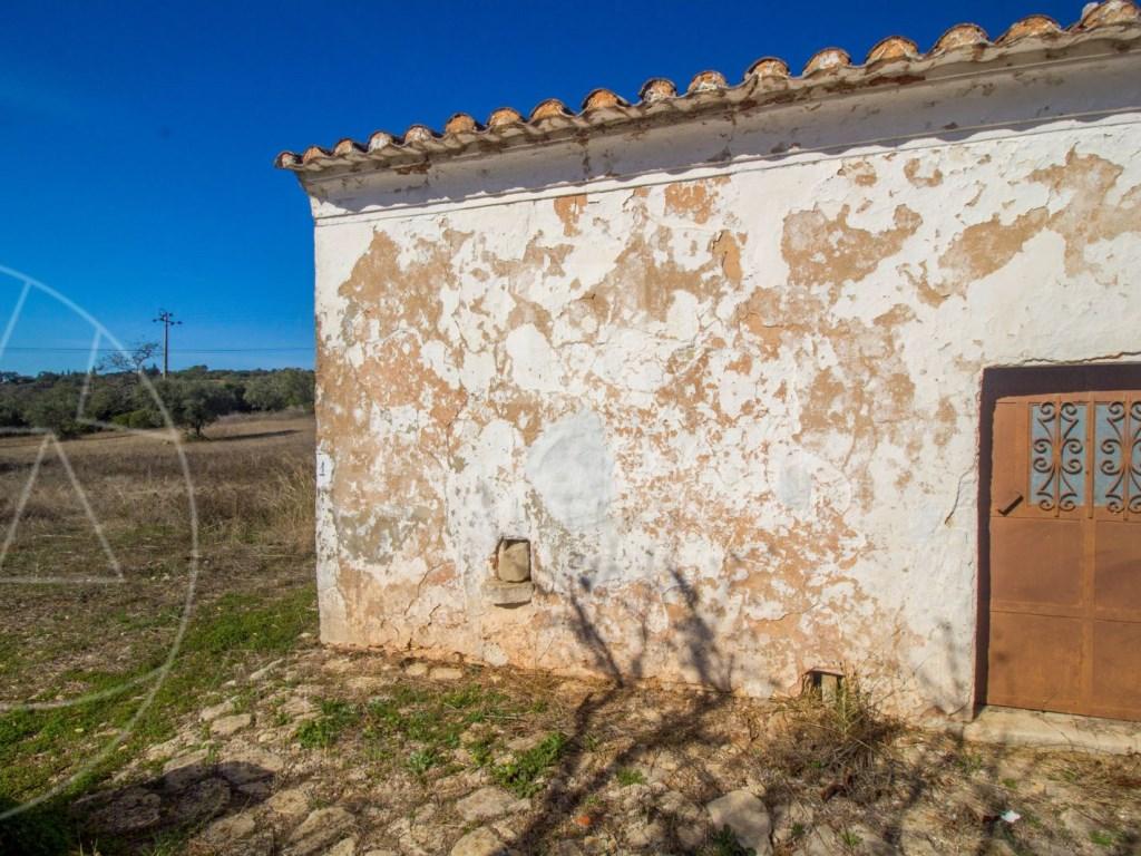 Old House to retrieve (7)