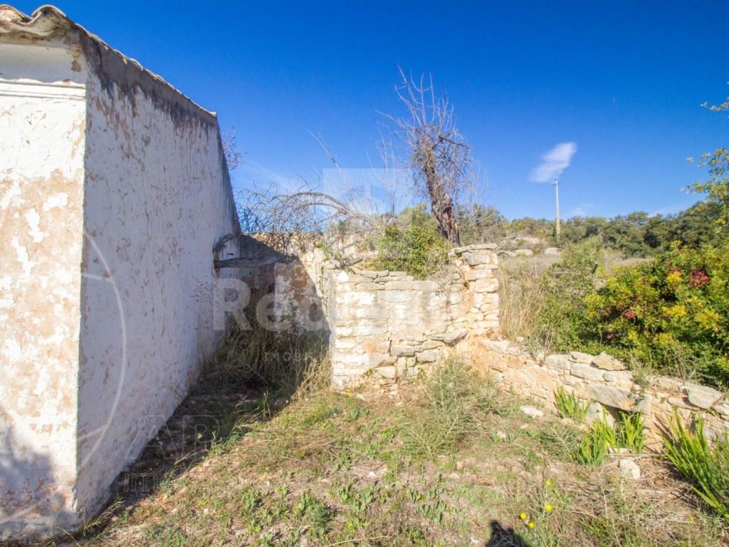 Old House to retrieve (12)