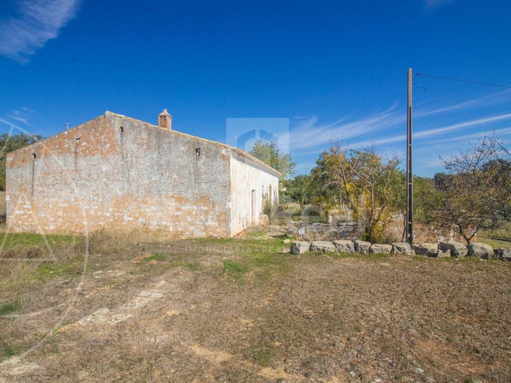Old House to retrieve (13)