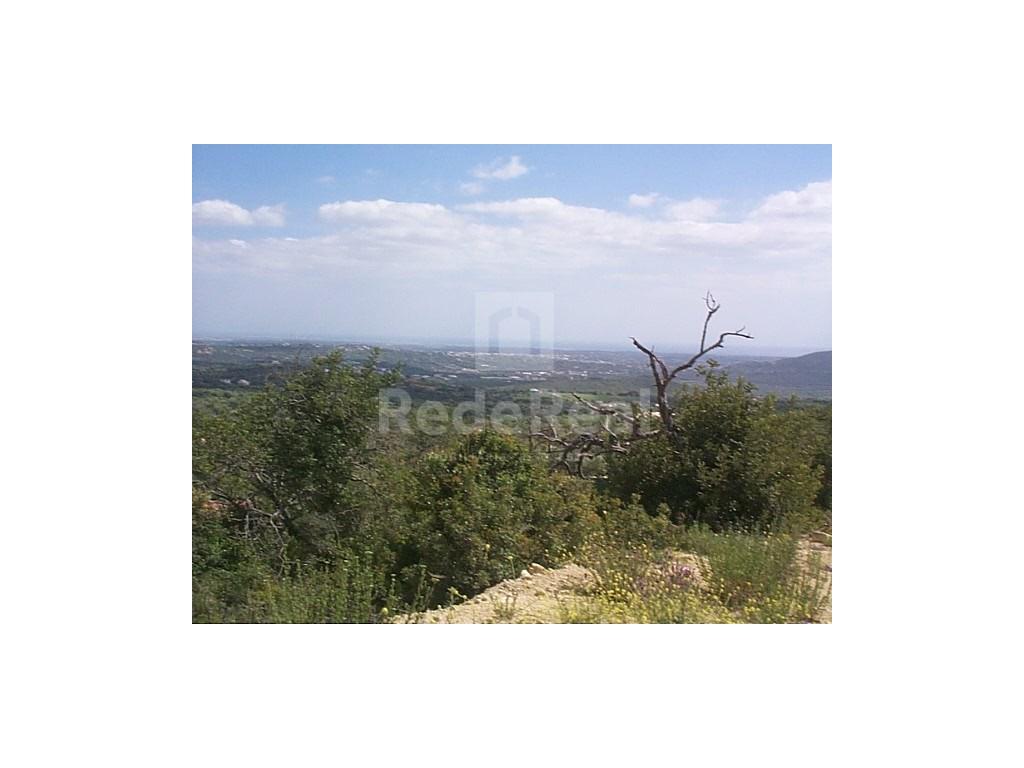 Land em Alfeição (1)