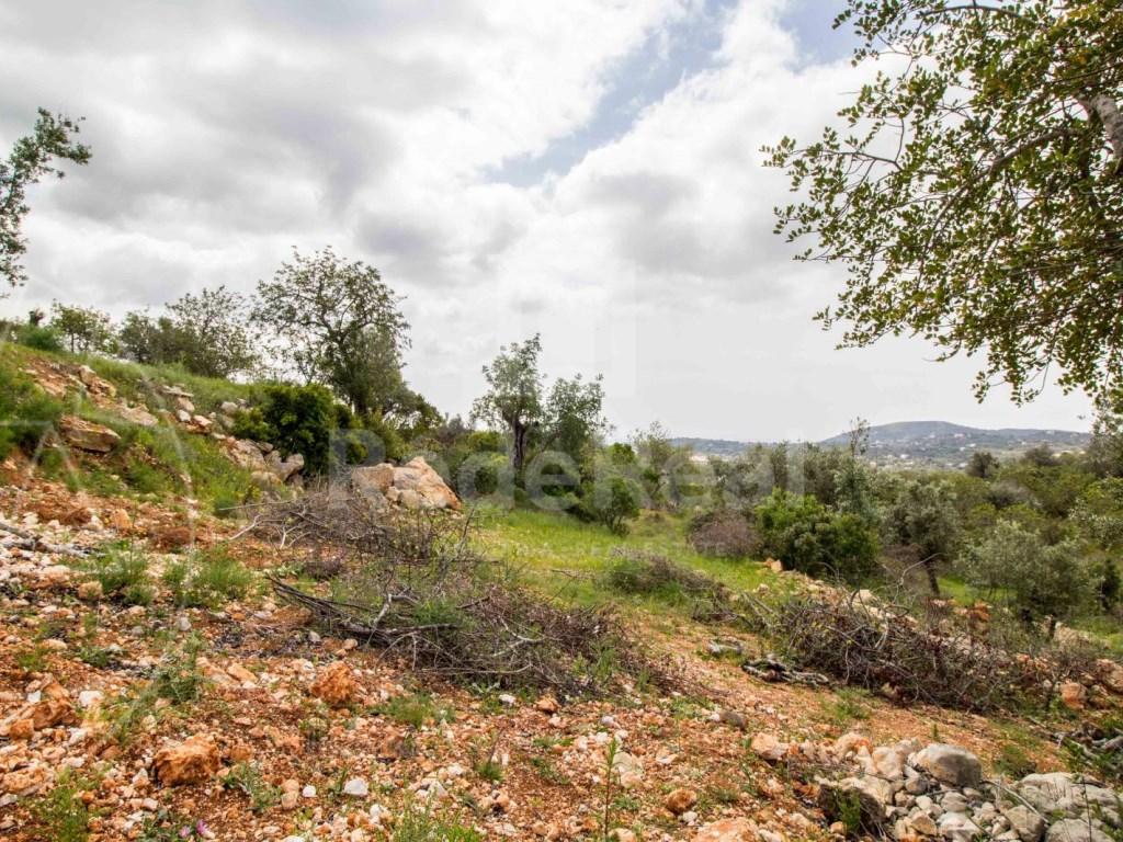 Rural Land in  Bordeira (2)