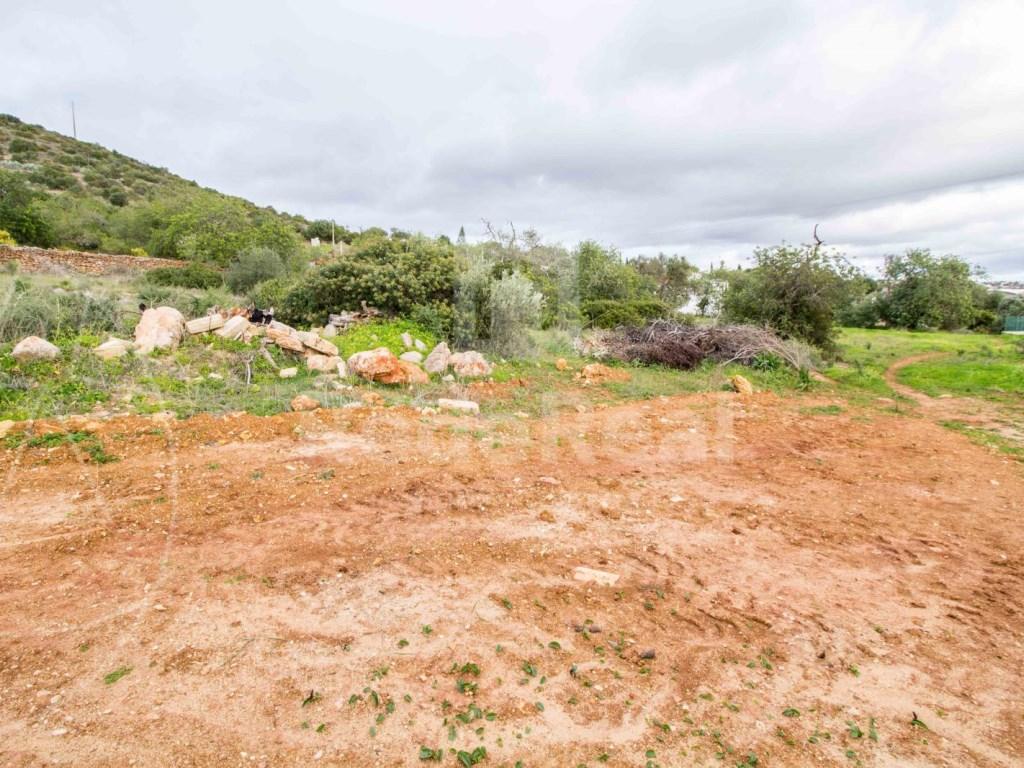Terreno em  Cerro Cabeça de Câmara (5)