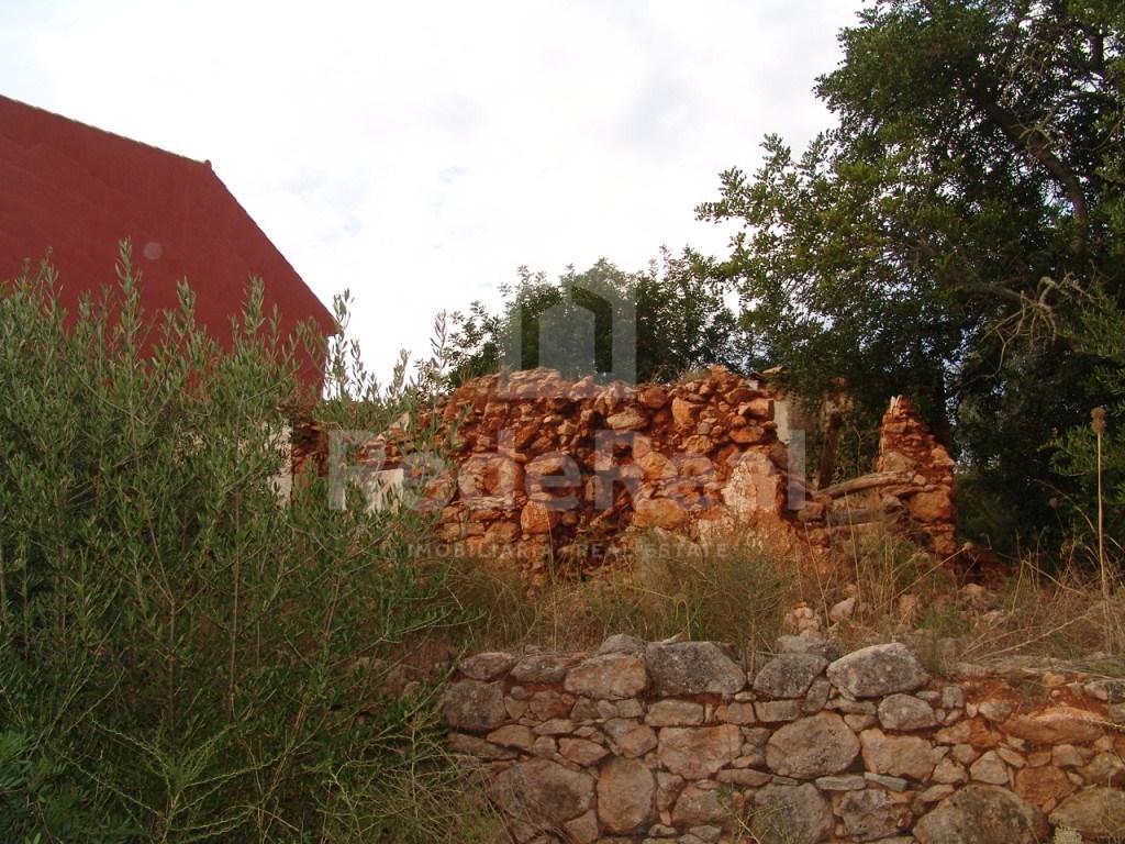 Terrain à Loulé  (4)