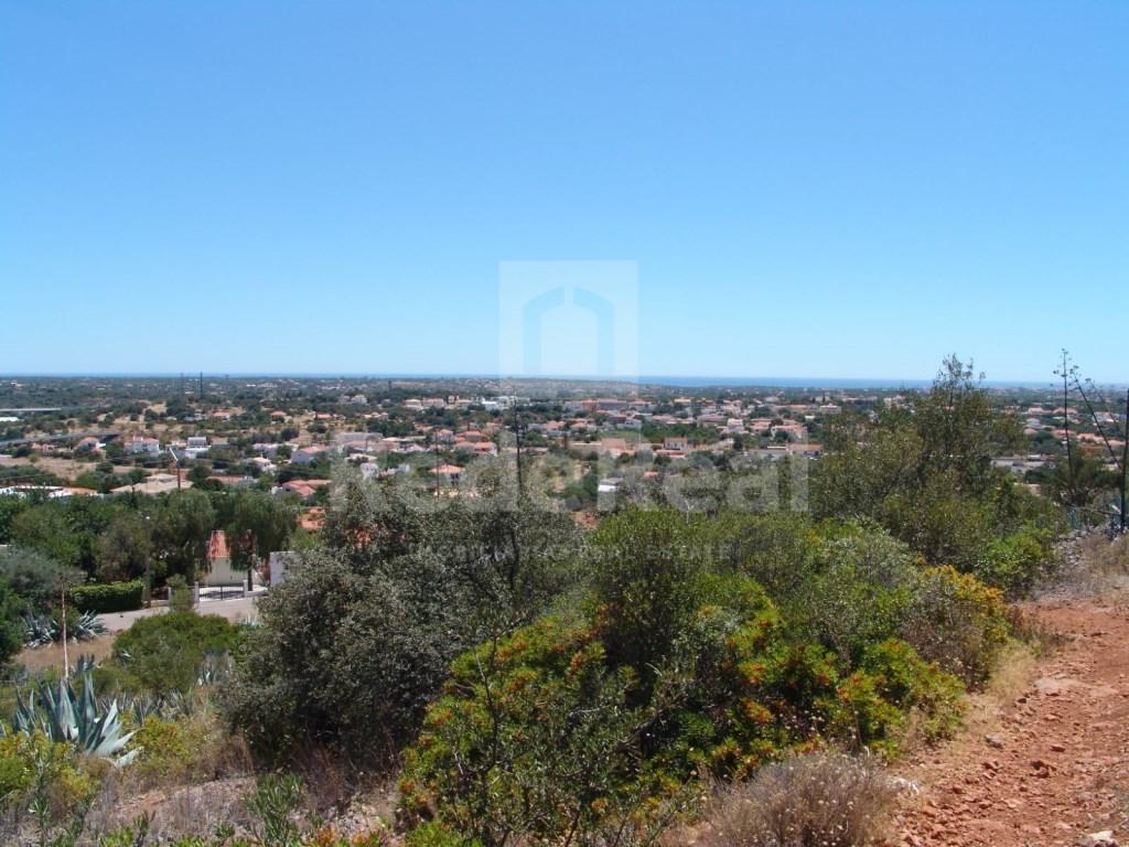 Terrain Rustique á Cerro Cabeça de Câmara (2)