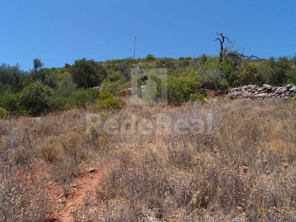 Terrain Rustique á Cerro Cabeça de Câmara (3)