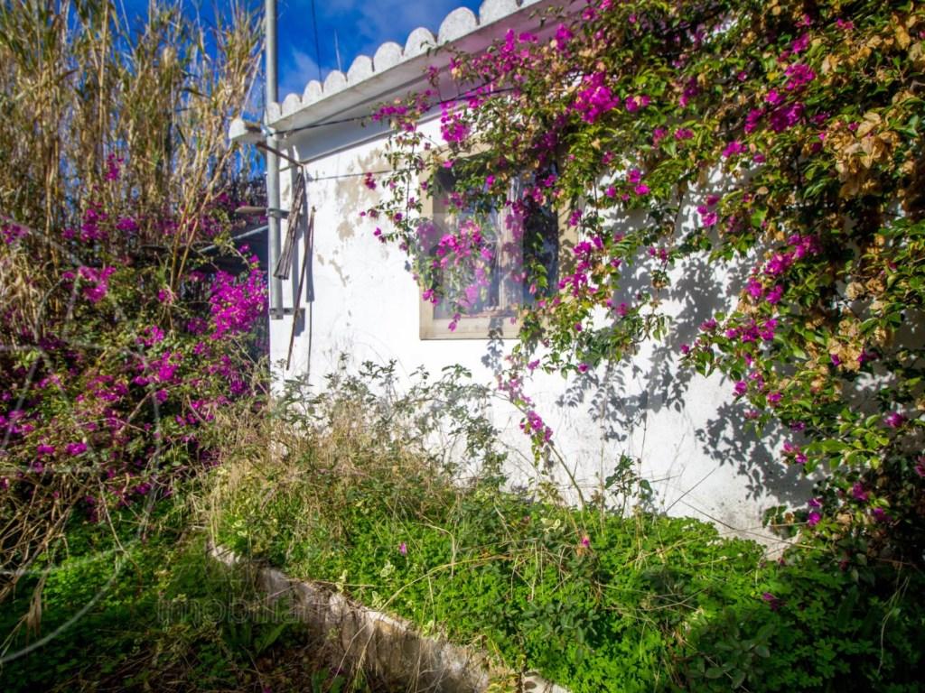 Old House in Murta (11)