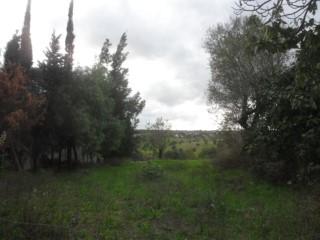 Terreno com Vialilidade de Construção para Moradia de 2 Pisos, Centro da Aldeia, para Venda  