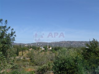 Mixed Land Quelfes - For sale