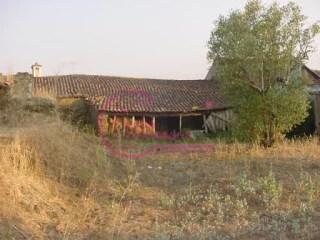 Casa Antiga T4 › Olalhas