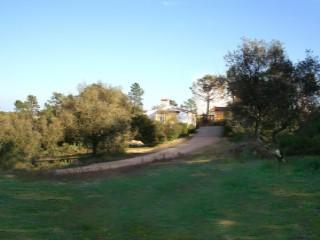 Casa Rústica › Santarém | T3+1
