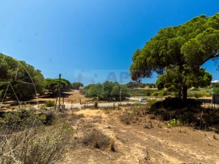 Land Quarteira - For sale