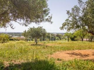 Rural Land Santa Bárbara de Nexe - For sale