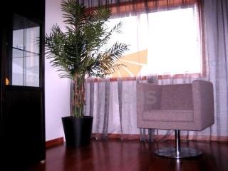 Apartamento T3 › Braga (São José de São Lázaro e São João do Souto)