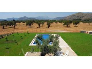 Terreno edificable en Pollensa, Mallorca. |