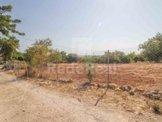 Terrain Rustique Santa Bárbara de Nexe - Acheter
