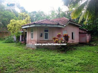 Beautiful elevated Building plot with 392 perches( Sq.m 9915)/100 year Old House |
