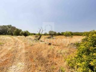 Rural Land Loulé (São Sebastião) - For sale