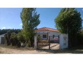 1040MU - Pequena quinta para venda 4360 m2 com dezenas de árvores de fruto. | T3+1