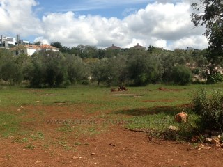 plot of land for construction near Almancil in Central Algarve.  