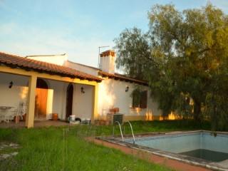 Casa Rústica T3 com Piscina, Poço e Terreno em Zona Rural para Venda | T3