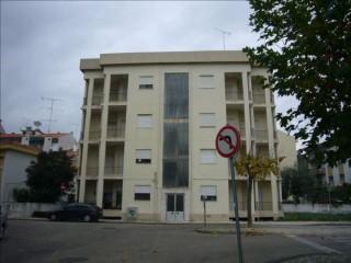 Apartamento › Ourém | T2 | 1WC