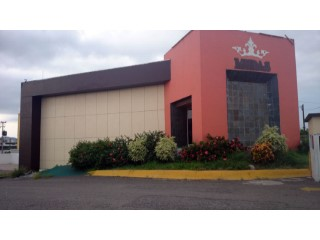 Local Comercial  › Palos Prietos