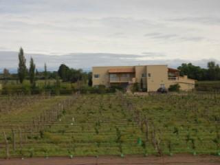 Hotel Boutique rodeado de viñedos -  Las Paredes -  San Rafael .- |