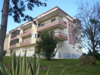 Apartamento T2 › S.Maria e S.Miguel, S.Martinho, S.Pedro Penaferrim