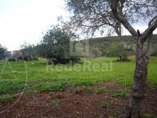 Terrain mixte Moncarapacho e Fuseta - Acheter