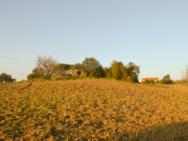Ruína e Terreno com 8.320m2, Junto de Santarém, Para Venda