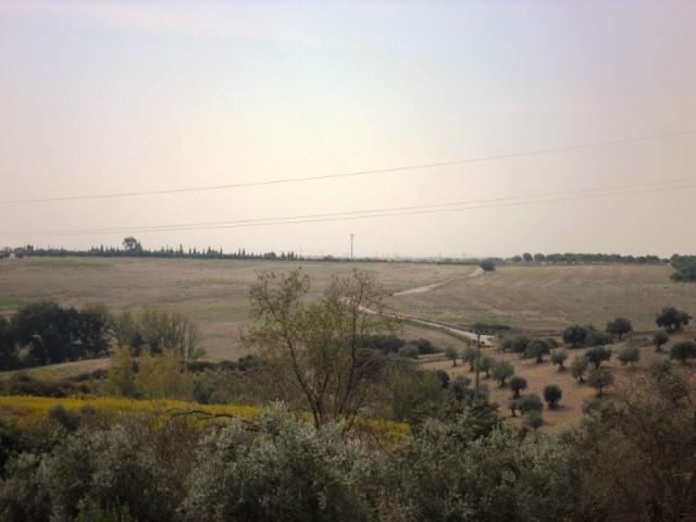 Terreno urbano com vista em Casével Para Venda