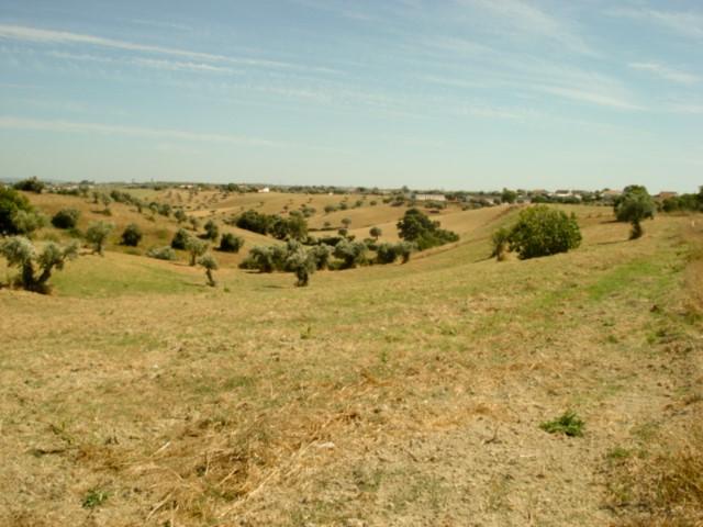 Quinta T3 › Achete, Azoia de Baixo e Póvoa de Santarém