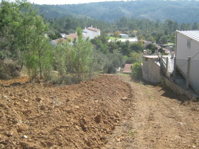 Terreno Rústico  › Serra e Junceira