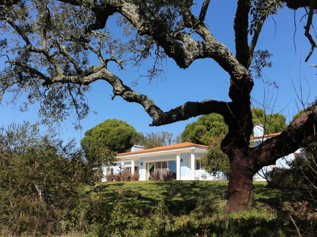 Quinta com Moradia T4 de Luxo, a Menos de 1 Hora de Lisboa e da Praia, Para Venda ou Permuta