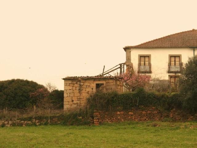 Casa Rústica  › Tábua
