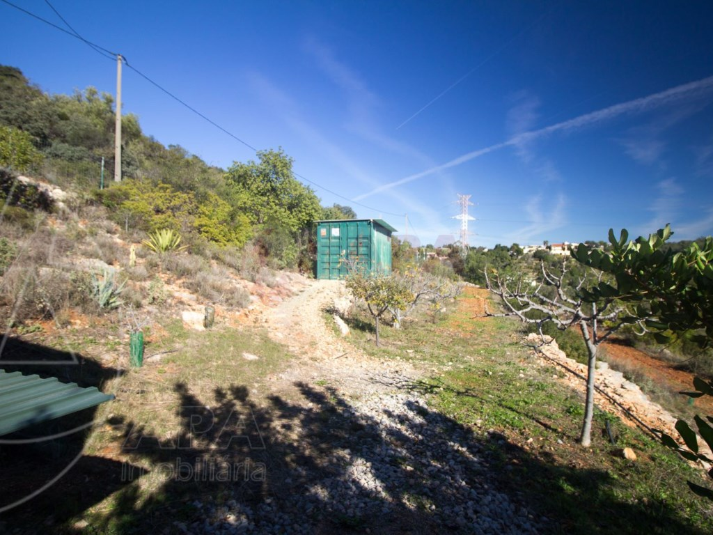 Terrain Rustique in Conceição e Estoi (12)