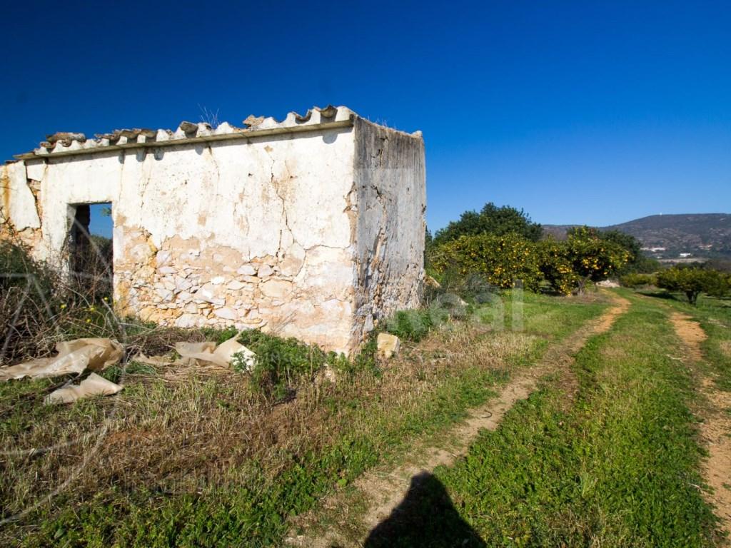 Terreno Misto in Santa Bárbara de Nexe (2)