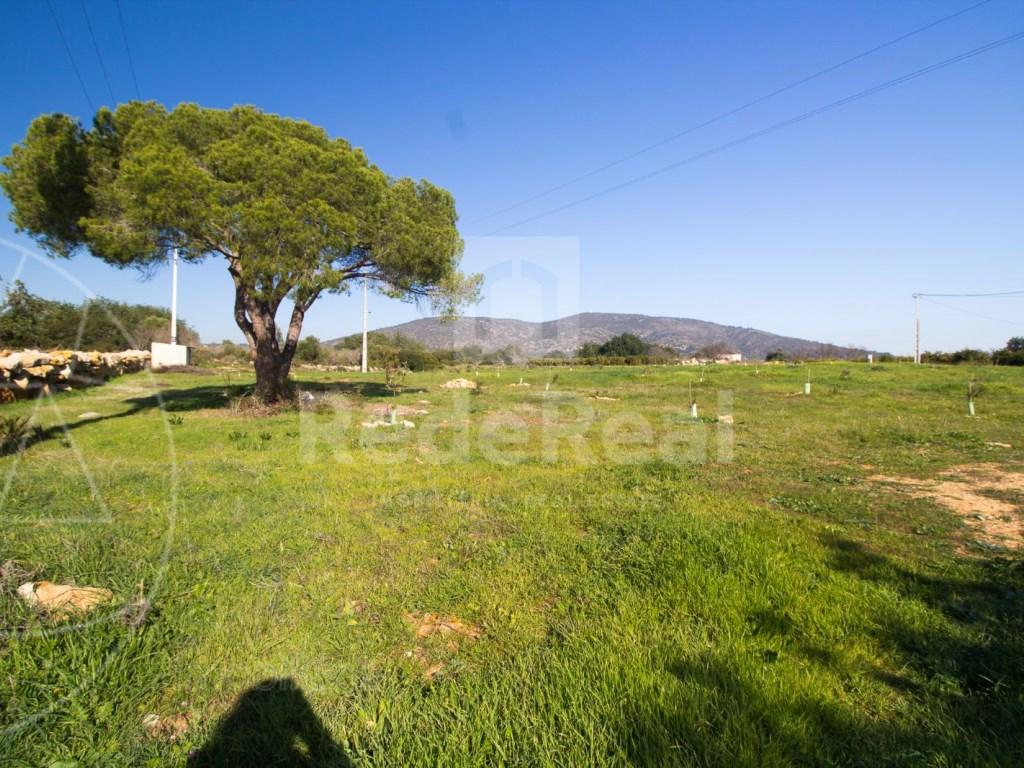 Terreno Misto in Santa Bárbara de Nexe (3)