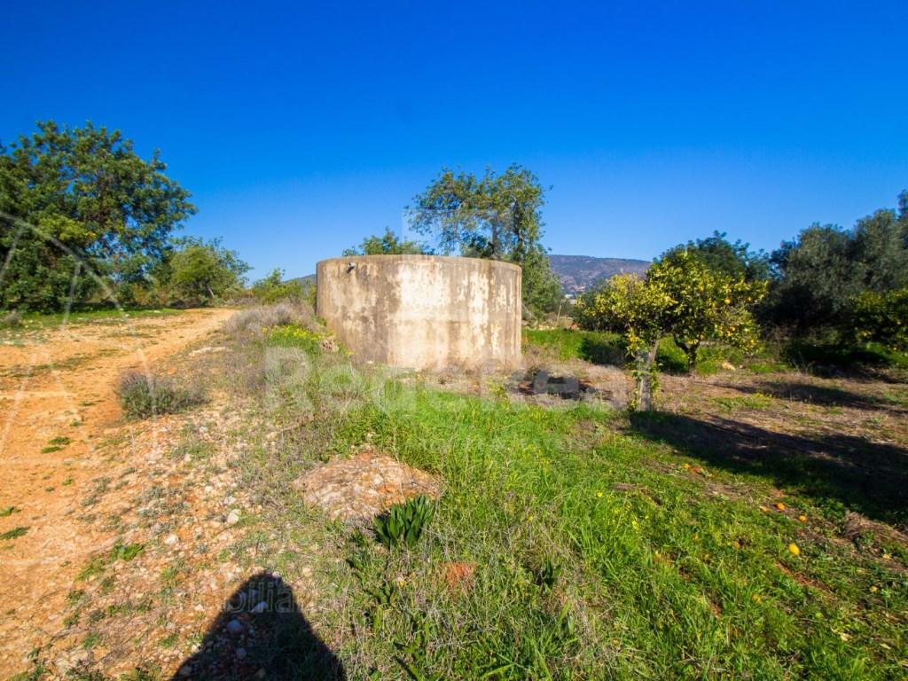 Terreno Misto in Santa Bárbara de Nexe (8)