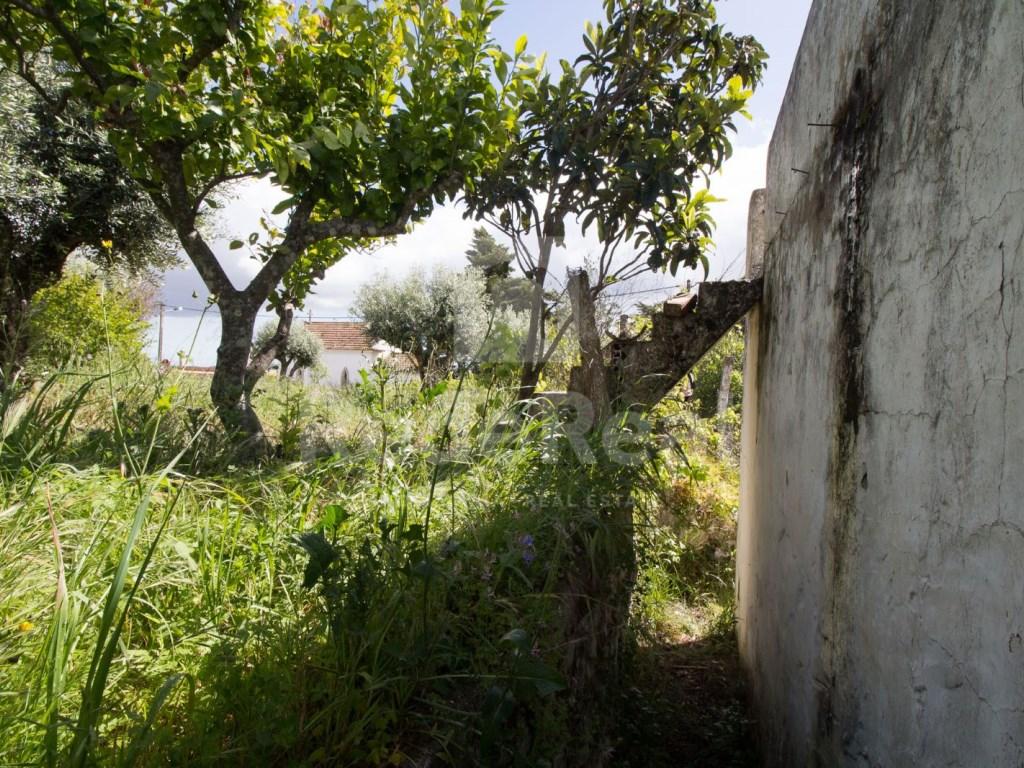 Casa Antiga in São Brás de Alportel (16)