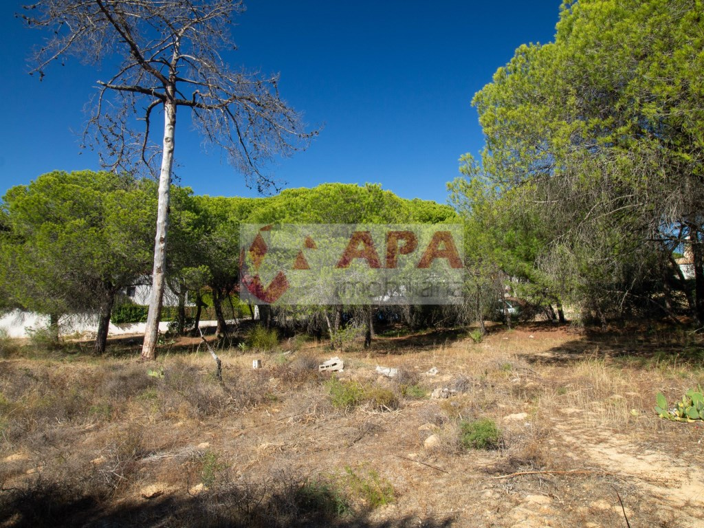 Terrain Urbain in Quarteira (1)
