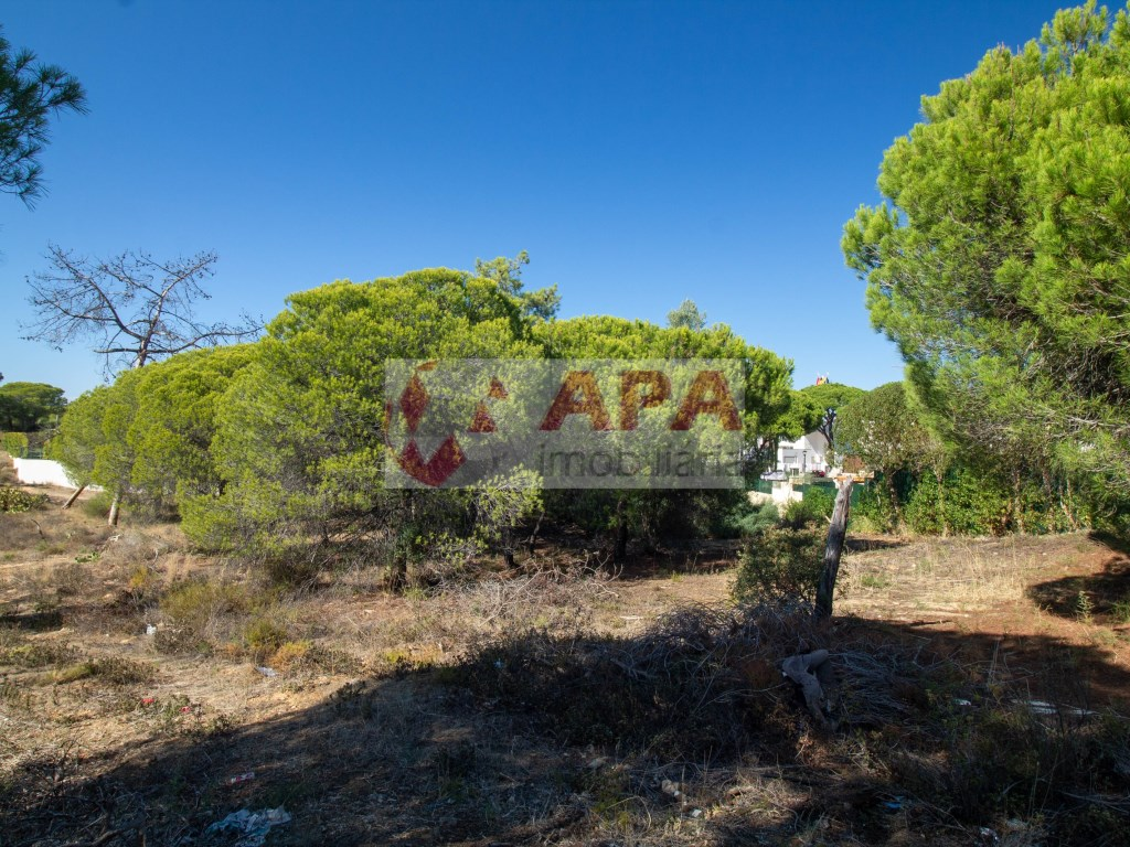 Terrain Urbain in Quarteira (2)
