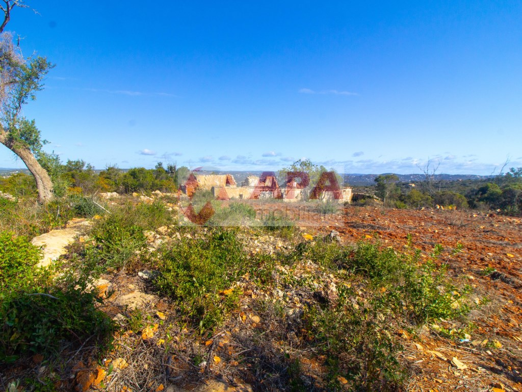 Mixed Land in Santa Bárbara de Nexe (2)
