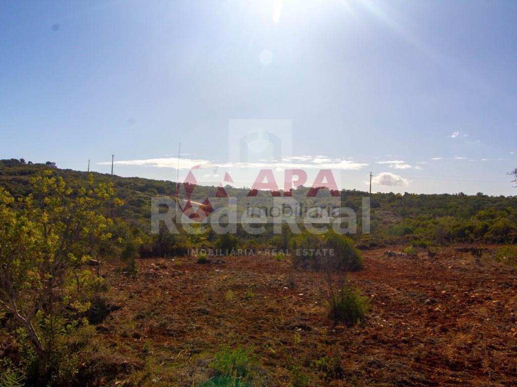 Mixed Land in Santa Bárbara de Nexe (10)