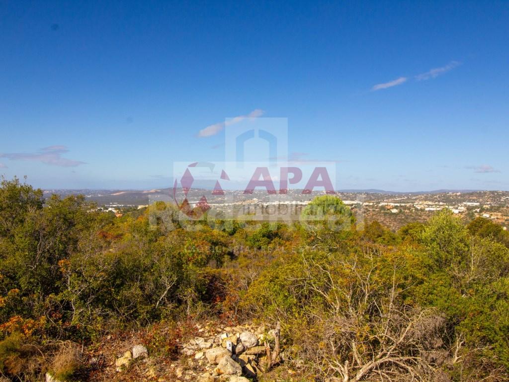 Mixed Land in Santa Bárbara de Nexe (11)
