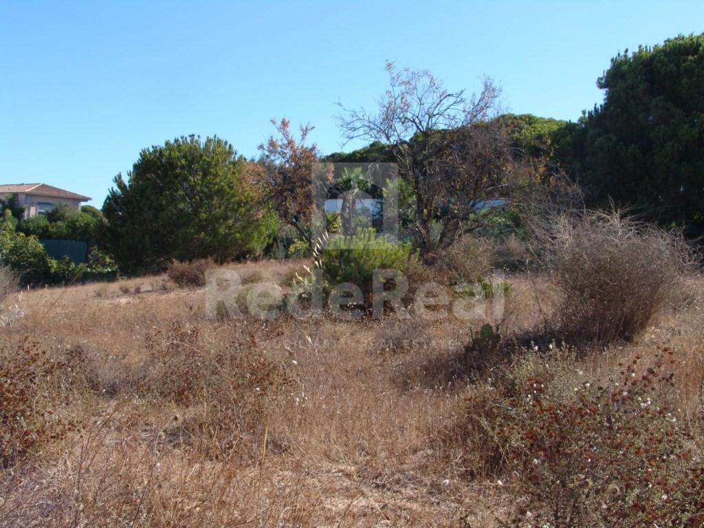 Land in Fonte  Santa (4)