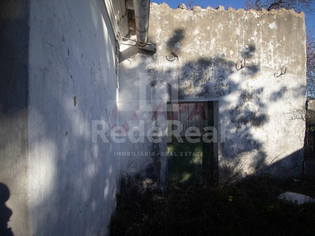 Ruine in Gorjões, Santa Bárbara de Nexe (3)