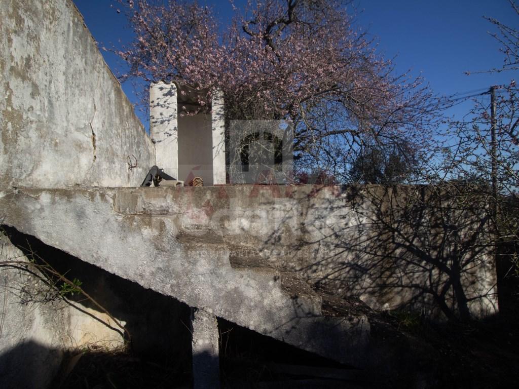 Ruine in Gorjões, Santa Bárbara de Nexe (4)