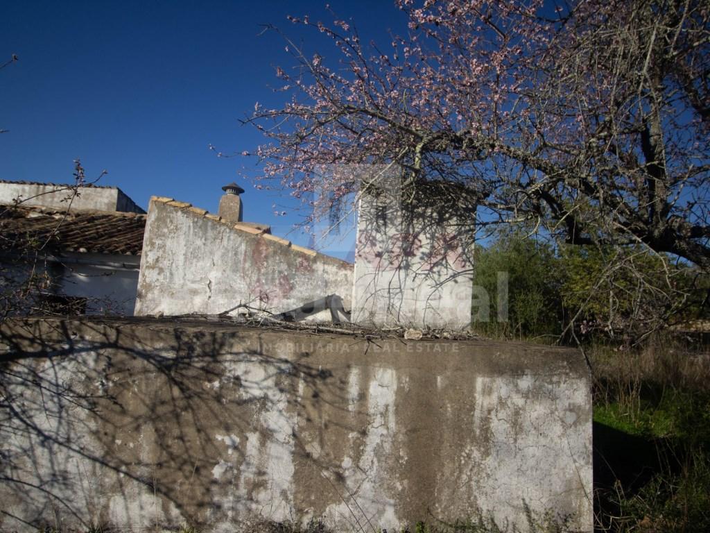 Ruine in Gorjões, Santa Bárbara de Nexe (14)