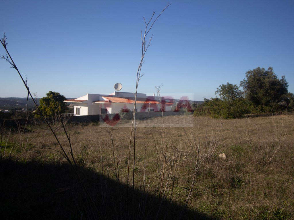 Ruine in Gorjões, Santa Bárbara de Nexe (25)